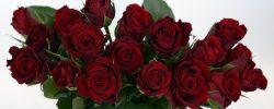 san valentino roma, amore, festa degli innamorati roma, serata romantica