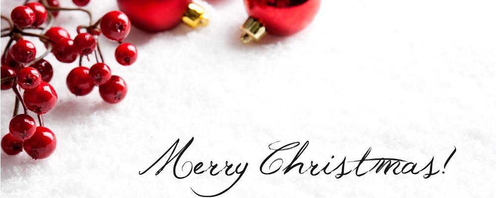 Cena Auguri Di Natale.Cena Degli Auguri Del Cenacolo Il Cenacolo Dei Viaggiatori Associazione Culturale